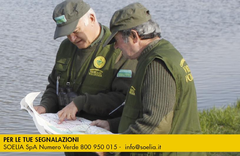 guardie ecologiche segnalazioni tel 800 950 015
